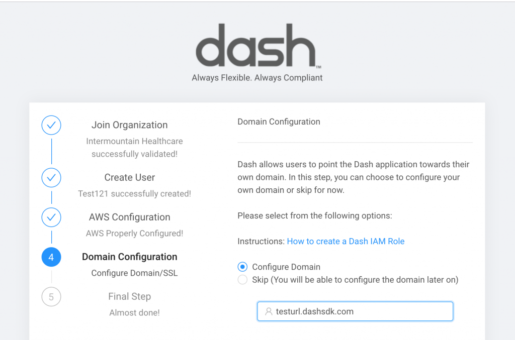 dash solutions domain name